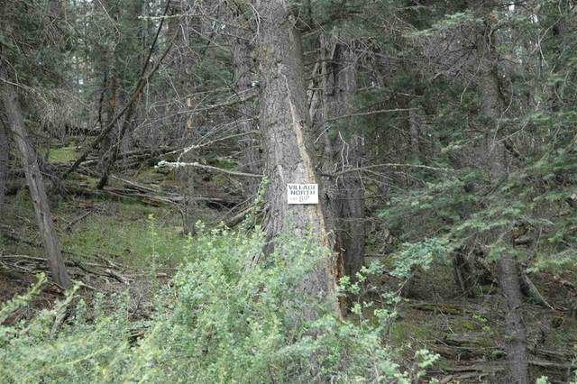 lot 89 Back Basin Road, Angel Fire, NM 87710 (MLS #107306) :: Angel Fire Real Estate & Land Co.