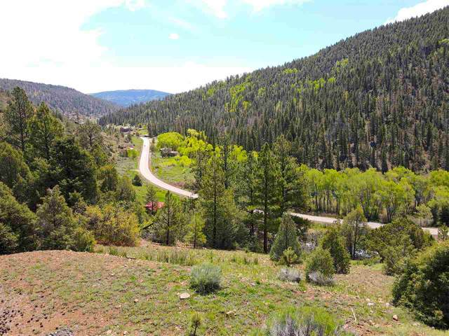Hwy 64, Taos, NM 87571 (MLS #107311) :: Berkshire Hathaway Home Services