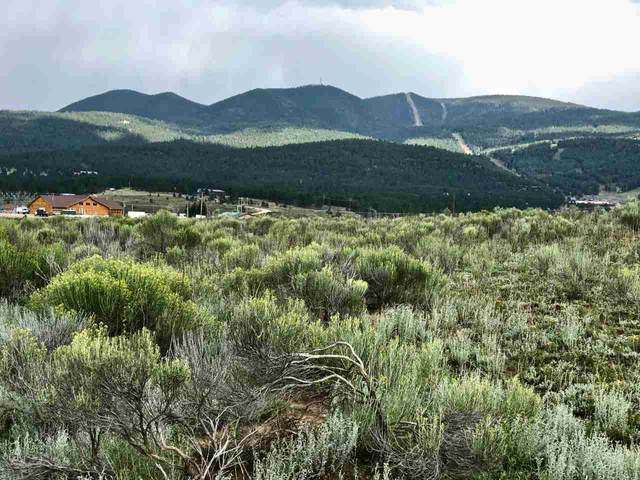 Lot  2 48 51 Trujillo Subdivision Hwy 434, Angel Fire, NM 87710 (MLS #107312) :: Chisum Realty Group