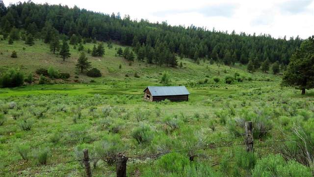 00 Forest Road 133, Tres Piedras, NM 87577 (MLS #107327) :: Chisum Realty Group