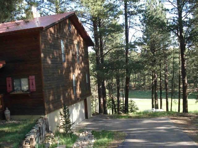 58 Spyglass Hill Road, Angel Fire, NM 87710 (MLS #107332) :: Angel Fire Real Estate & Land Co.