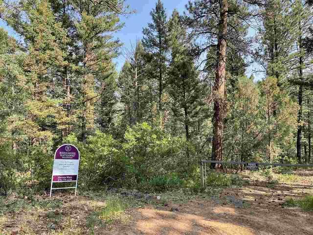 TBD Mondragon Canyon Rd, Taos, NM 87571 (MLS #107358) :: Page Sullivan Group