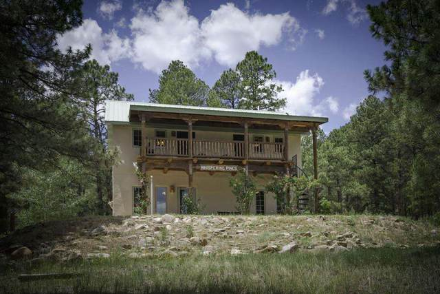 717 State Highway 434, Guadalupita, NM 87732 (MLS #107370) :: Angel Fire Real Estate & Land Co.