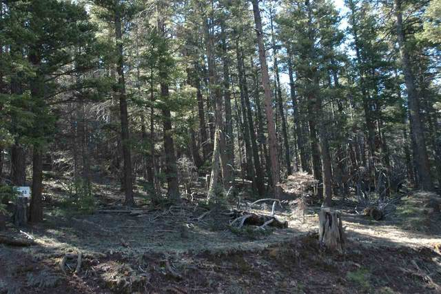 82 Back Basin Rd, Angel Fire, NM 87710 (MLS #107372) :: Angel Fire Real Estate & Land Co.