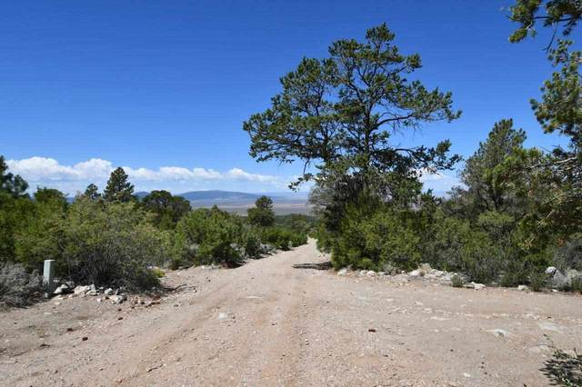 O Venado Road, Taos, NM 87571 (MLS #107389) :: Chisum Realty Group