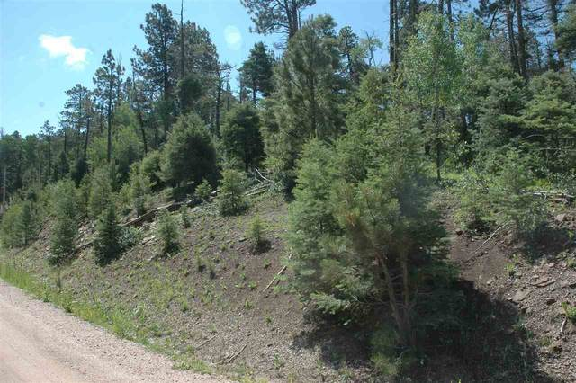 lot 1565 Country Club III, Angel Fire, NM 87710 (MLS #107390) :: Coldwell Banker Mountain Properties