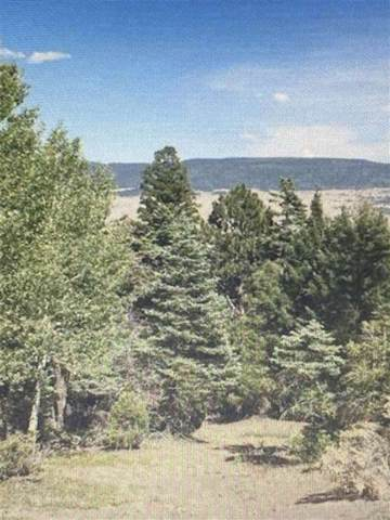 lots 90  93 Taos Pines, Angel Fire, NM 87710 (MLS #107406) :: Berkshire Hathaway Home Services