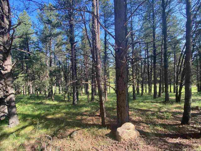 180A Spyglass Hill, Angel Fire, NM 87710 (MLS #107431) :: Berkshire Hathaway Home Services