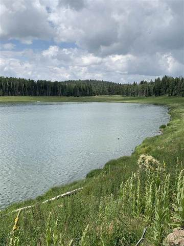 Lot 56 AB Hidden Lake Subdivision, Angel Fire, NM 87710 (MLS #107438) :: Berkshire Hathaway Home Services