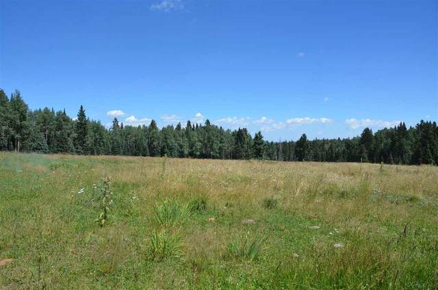 Lots 13  14 Pleasant Meadow Drive, Angel Fire, NM 87710 (MLS #107441) :: Berkshire Hathaway Home Services