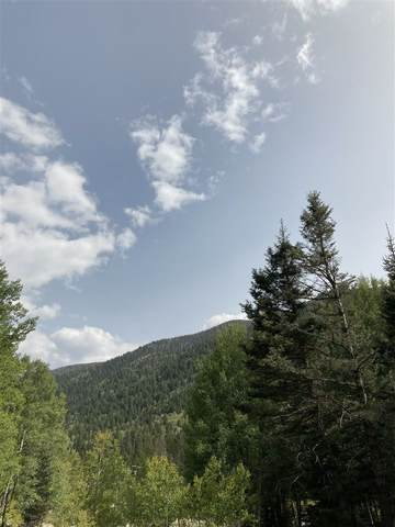 1318 and 1320 State Hwy 150, Taos Ski Valley, NM 87525 (MLS #107449) :: Berkshire Hathaway Home Services