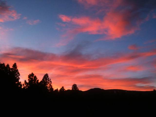 lot 11 Saddleback Trail, Angel Fire, NM 87710 (MLS #107453) :: Angel Fire Real Estate & Land Co.