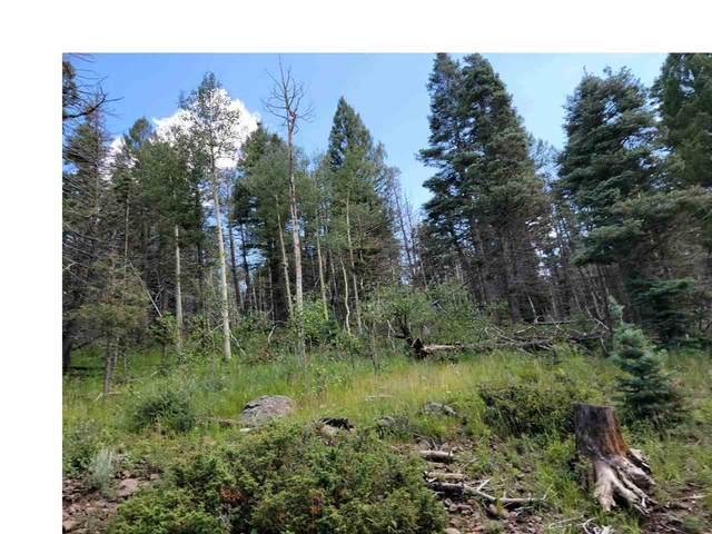 Lot 1342 Skyview Way, Angel Fire, NM 87710 (MLS #107456) :: Angel Fire Real Estate & Land Co.