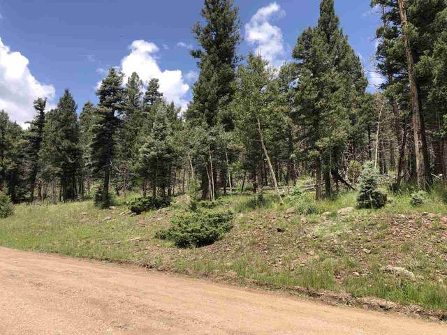 1398 El Camino Real, Angel Fire, NM 87710 (MLS #107471) :: Angel Fire Real Estate & Land Co.