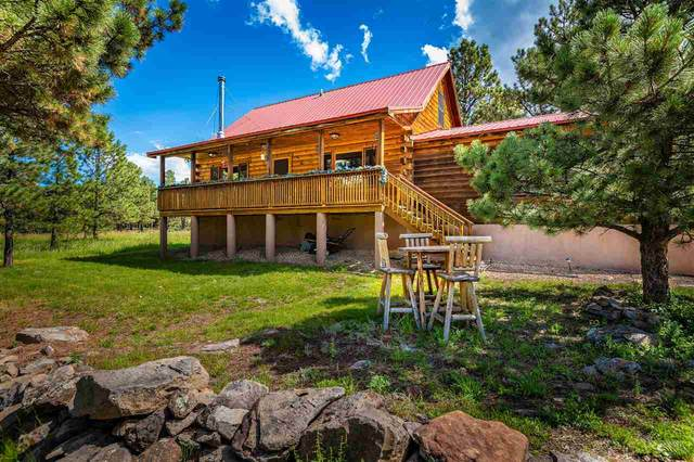 24 Susan Lane, Angel Fire, NM 87710 (MLS #107480) :: Chisum Realty Group