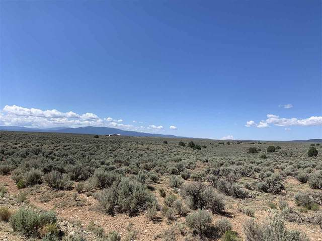Lot 15 and 20 Calle Filiberto, Taos, NM 87571 (MLS #107489) :: Page Sullivan Group