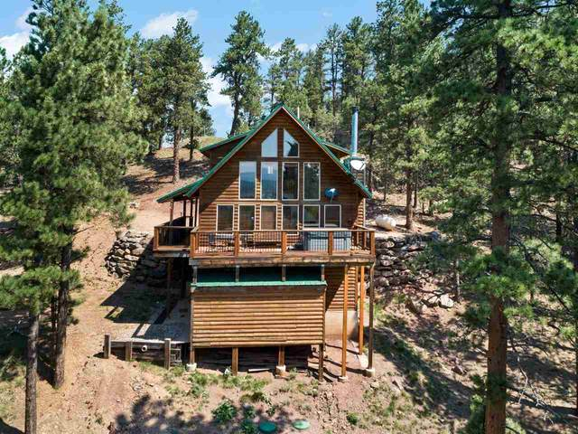 102 El Camino Real, Angel Fire, NM 87710 (MLS #107493) :: Chisum Realty Group