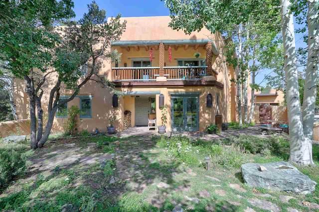 82 Deer Mesa Rd, Valdez, NM 87580 (MLS #107510) :: Page Sullivan Group
