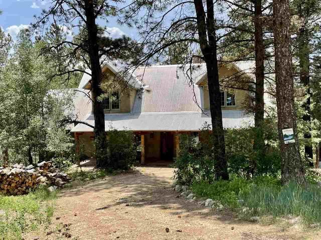 26902 Highway 64, Taos, NM 87571 (MLS #107520) :: Page Sullivan Group