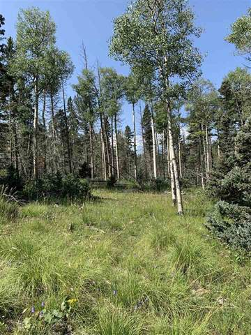 Lot 34 Pleasant Meadow Drive, Angel Fire, NM 87710 (MLS #107521) :: Chisum Realty Group
