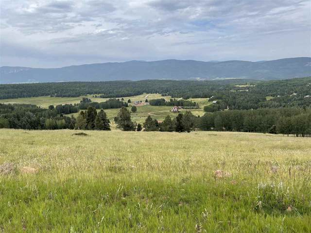 1620A Skyview Way, Angel Fire, NM 87710 (MLS #107547) :: Angel Fire Real Estate & Land Co.