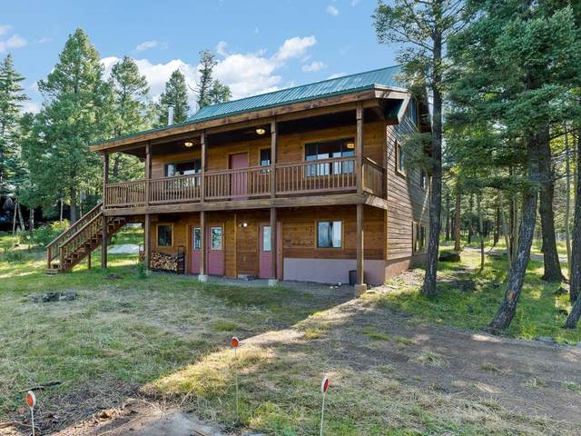 39 Cheerful Way, Angel Fire, NM 87710 (MLS #107582) :: Chisum Realty Group