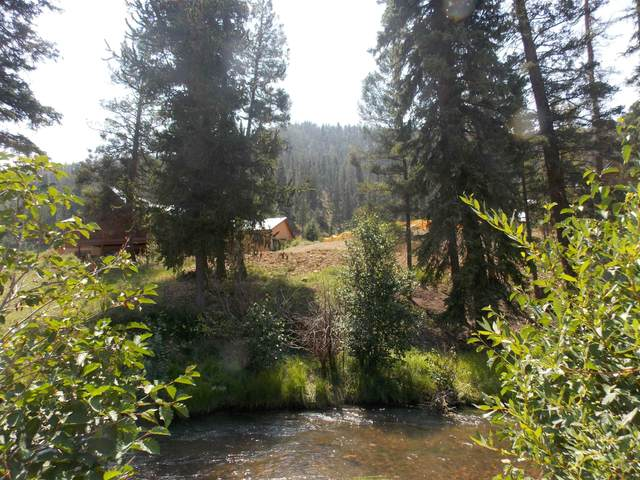 10 Powderpuff, Red River, NM 87558 (MLS #107584) :: Chisum Realty Group