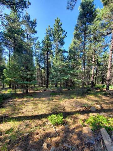 Lot 146 San Andres Dr, Angel Fire, NM 87710 (MLS #107600) :: Chisum Realty Group
