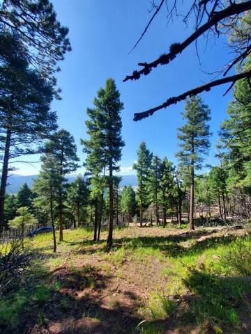 Lot 495 Vail Loop, Angel Fire, NM 87710 (MLS #107601) :: Chisum Realty Group