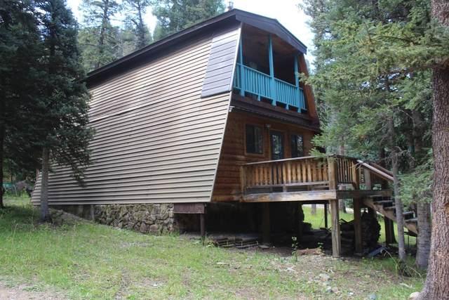 47 Monte Vista, Red River, NM 87558 (MLS #107610) :: Page Sullivan Group