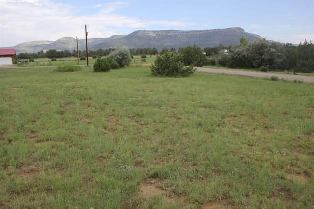99 Pinon, Cimarron, NM 87714 (MLS #107614) :: Chisum Realty Group