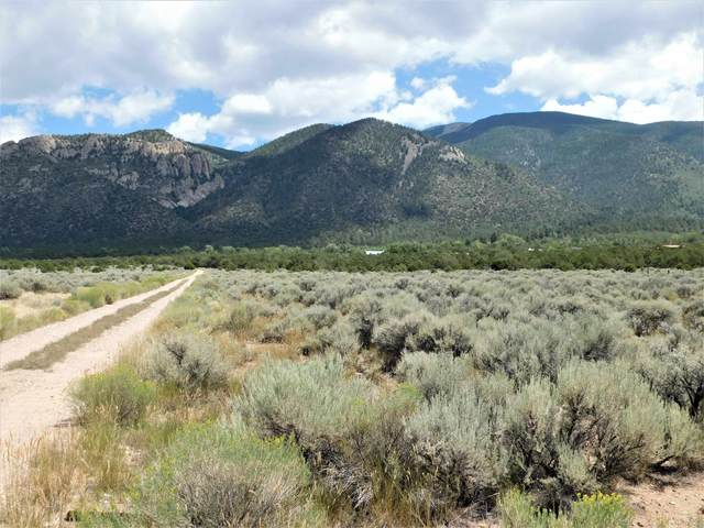 Tract  F Off Of Quintana Road, Questa, NM 87556 (MLS #107620) :: Chisum Realty Group
