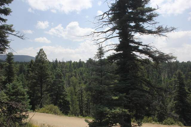 LOT 1124 El Camino Real, Angel Fire, NM 87710 (MLS #107622) :: Angel Fire Real Estate & Land Co.