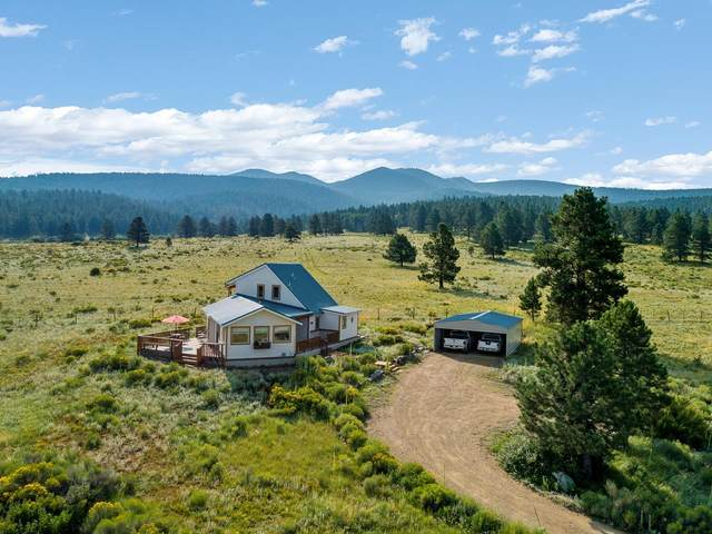 110 Halo Pines Terrace, Angel Fire, NM 87710 (MLS #107629) :: Chisum Realty Group