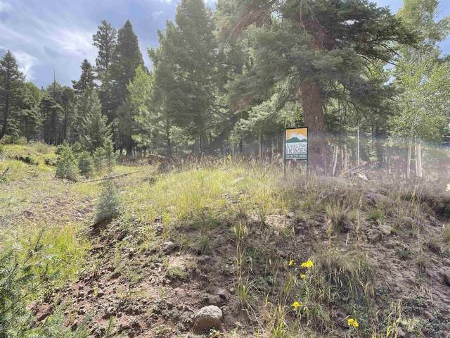 440 El Camino Real, Angel Fire, NM 99999 (MLS #107635) :: Angel Fire Real Estate & Land Co.