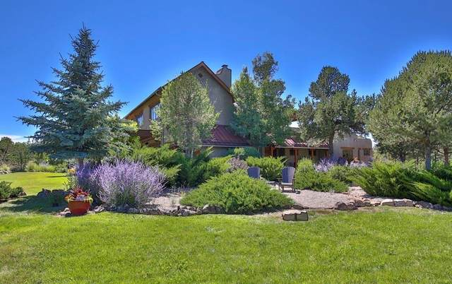 350 Duval Rd, Taos, NM 87571 (MLS #107647) :: Chisum Realty Group