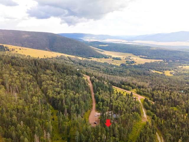 1268 Starlight Overlook, Angel Fire, NM 87710 (MLS #107658) :: Angel Fire Real Estate & Land Co.