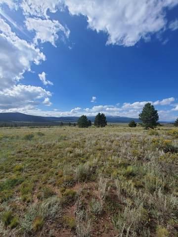 Lot 22 Buckskin Rd, Angel Fire, NM 87710 (MLS #107661) :: Angel Fire Real Estate & Land Co.