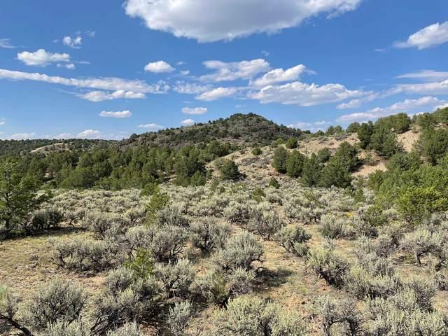 Off Tres Lomas Road, Taos, NM 87571 (MLS #107676) :: Chisum Realty Group