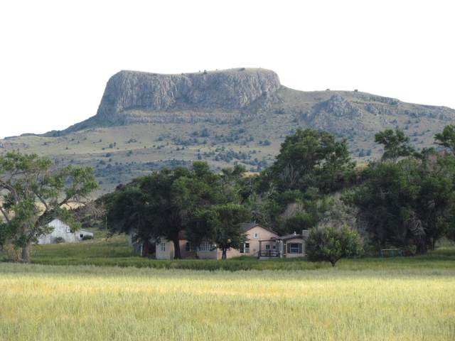 39081 Old Hwy 85, Wagon Mound, NM 87752 (MLS #107700) :: Chisum Realty Group