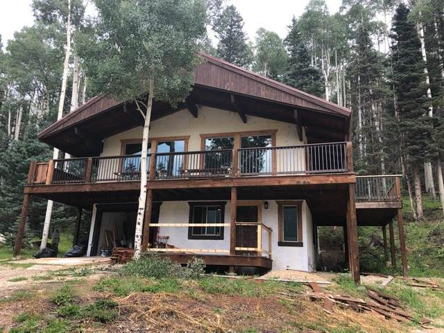 12 Black Copper Canyon Rd, Red River, NM 87558 (MLS #107703) :: Chisum Realty Group