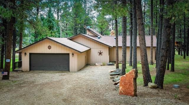 15 Tam O Shanter, Angel Fire, NM 87710 (MLS #107752) :: Chisum Realty Group