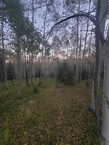 Lot 1515 1516 Agua Fria Dr, Angel Fire, NM 87710 (MLS #107758) :: Page Sullivan Group