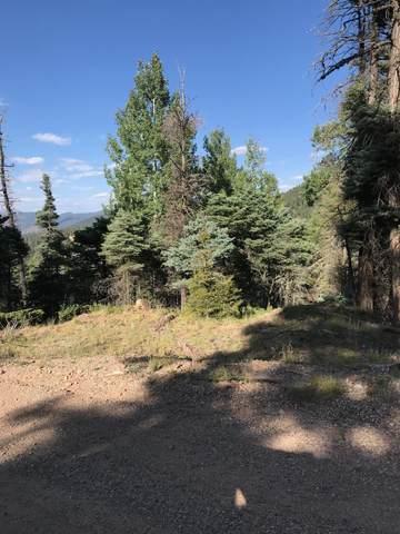372 Vail Loop, Angel Fire, NM 87710 (MLS #107764) :: Page Sullivan Group