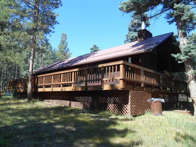 80 Alpine Lake Way, Angel Fire, NM 87810 (MLS #107766) :: Chisum Realty Group