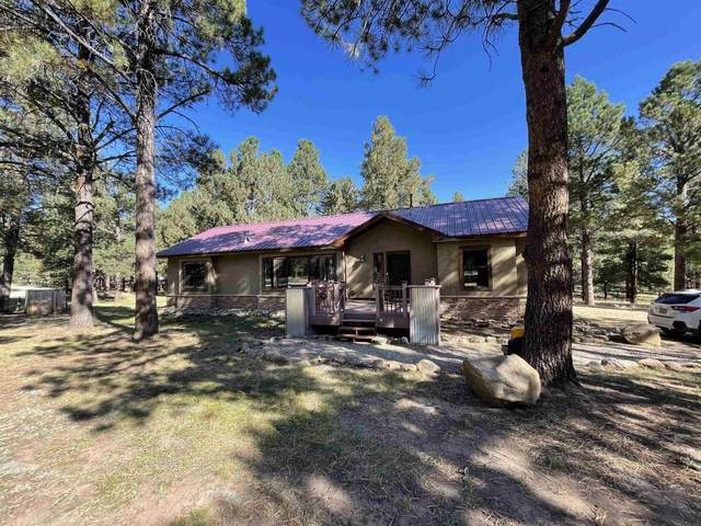15 Calle Del Lago, Angel Fire, NM 87710 (MLS #107778) :: Chisum Realty Group