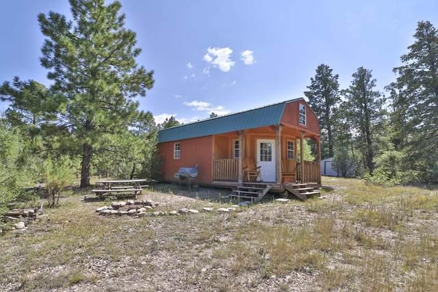 160 El Valle Rd, EL VALLE, NM 87521 (MLS #107785) :: Coldwell Banker Mountain Properties