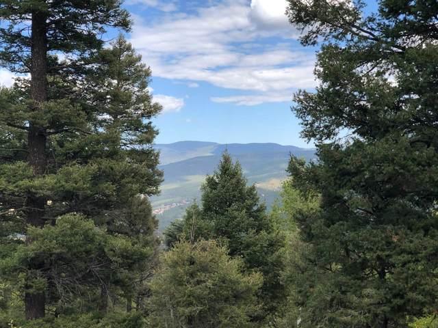 108 Zia, Angel Fire, NM 87710 (MLS #107811) :: Coldwell Banker Mountain Properties