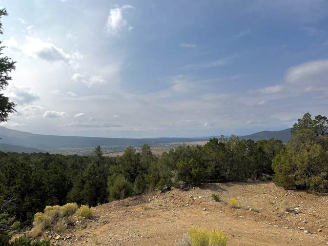 Lot 82 Upper Pinabete Road, Questa, NM 87556 (MLS #107834) :: Coldwell Banker Mountain Properties