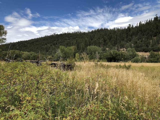 518 Highway At Buddhist Compound, Penasco, NM 87553 (MLS #107836) :: Angel Fire Real Estate & Land Co.